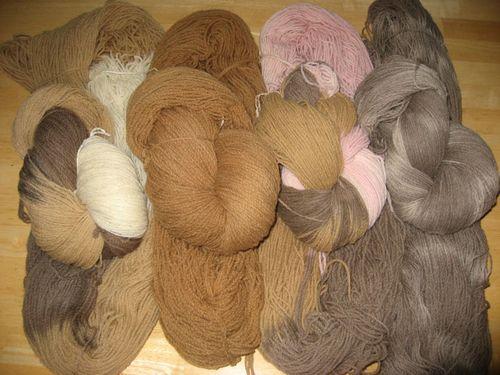 Black.walnuts.dyeing